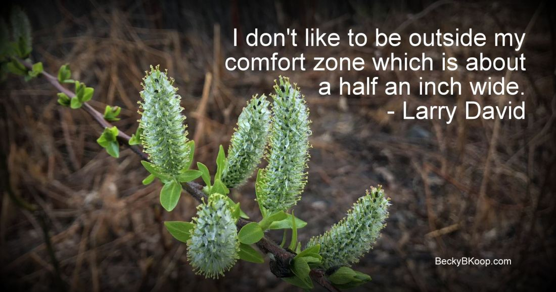 I don't like to be outside my comfort zone which is about a half an inch wide. - Larry David